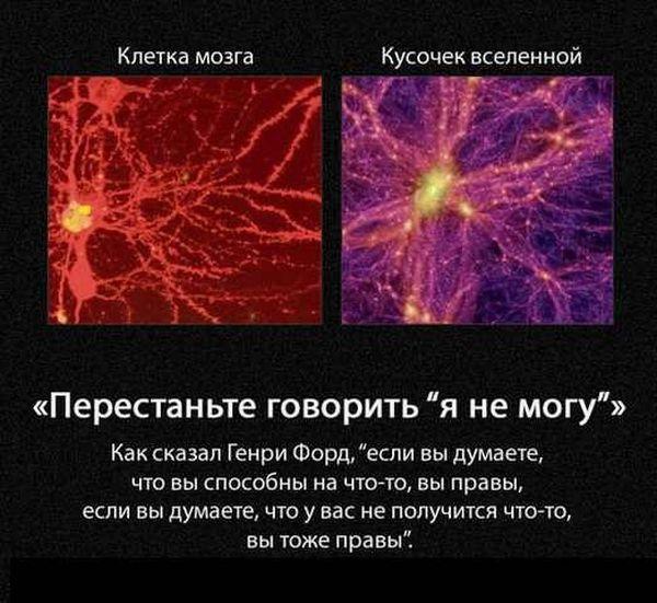 Мозг как вселенная