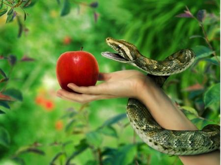 Как змей яблоки продает